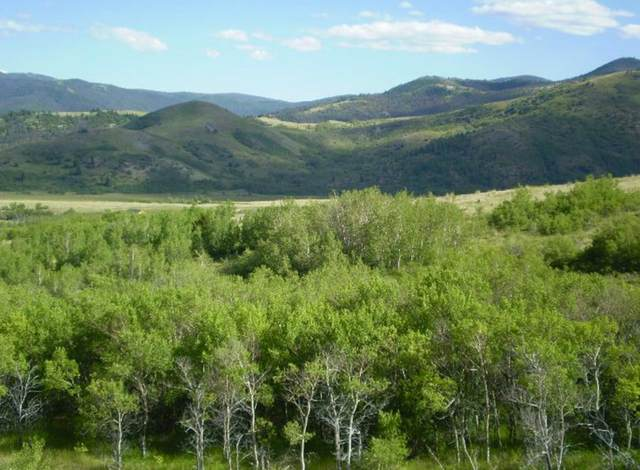 Lots 81-82 Outlaw Trail, Anaconda, MT 59711 (MLS #22101323) :: Montana Life Real Estate