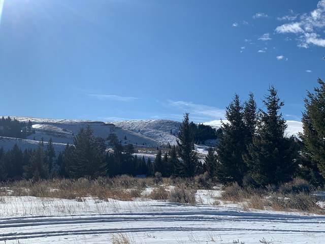 130 Hitching Post Road, White Sulphur Springs, MT 59645 (MLS #22101400) :: Dahlquist Realtors