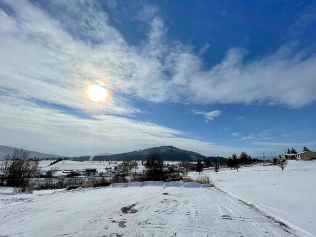 200 Apple Tree Circle, Kalispell, MT 59901 (MLS #22101752) :: Andy O Realty Group
