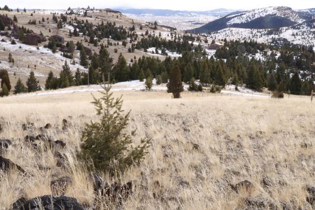 Tbd Bison Lane, Ramsay, MT 59748 (MLS #22101865) :: Andy O Realty Group
