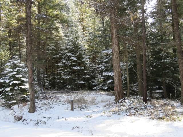 Tbd Mud Lake Road, Troy, MT 59935 (MLS #22102018) :: Dahlquist Realtors