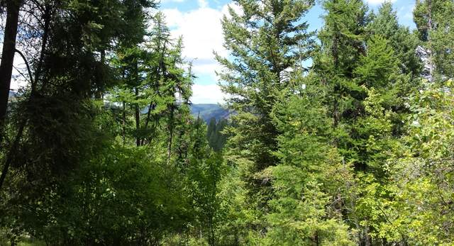500 Blacktail Heights Road, Lakeside, MT 59922 (MLS #22102269) :: Performance Real Estate
