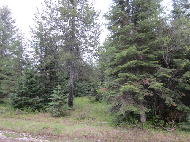Nhn Copper Ridge Road, Trout Creek, MT 59874 (MLS #22102277) :: Whitefish Escapes Realty
