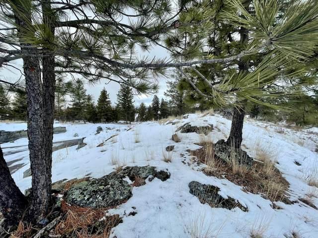 450 Chapman Hill Road, Bigfork, MT 59911 (MLS #22102448) :: Montana Life Real Estate