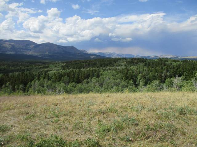 Nhn Glacier Avenue, East Glacier Park, MT 59434 (MLS #22103181) :: Whitefish Escapes Realty