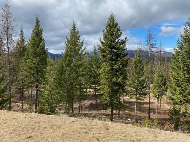 Lot 1 Annerly Ferry Road, Rexford, MT 59930 (MLS #22103918) :: Montana Life Real Estate