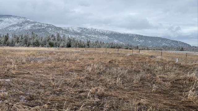 Lot 9 Bitterroot Estates Drive, Marion, MT 59925 (MLS #22103919) :: Andy O Realty Group