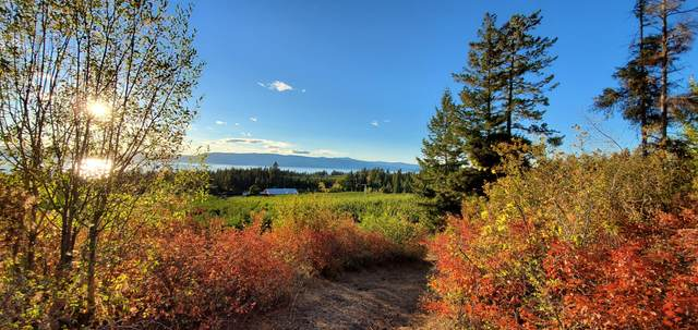 23726 Montana Hwy 35, Bigfork, MT 59911 (MLS #22103921) :: Peak Property Advisors