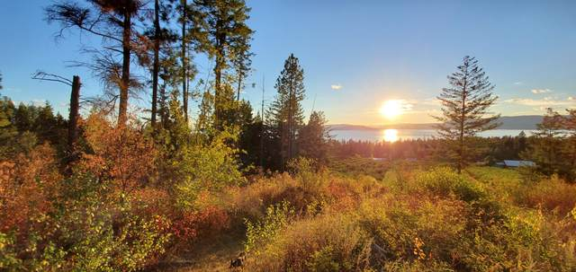 23726 Montana Hwy 35, Bigfork, MT 59911 (MLS #22103922) :: Whitefish Escapes Realty