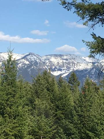 35 Star View Drive, Bigfork, MT 59911 (MLS #22104397) :: Whitefish Escapes Realty