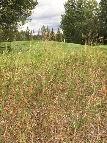 725 Seminole Lane, Columbia Falls, MT 59912 (MLS #22104594) :: Whitefish Escapes Realty
