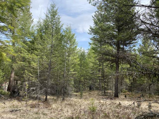 Lot 27 Mountain View Drive S, Eureka, MT 59917 (MLS #22104610) :: Whitefish Escapes Realty