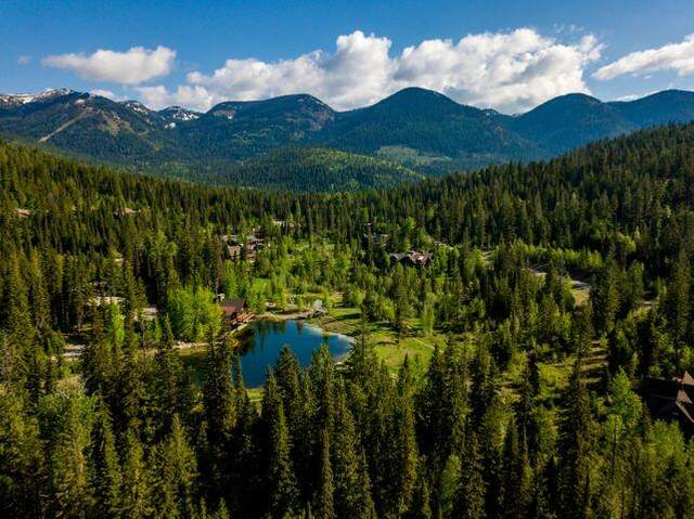 184 Woodlandstar Circle, Whitefish, MT 59937 (MLS #22104805) :: Whitefish Escapes Realty