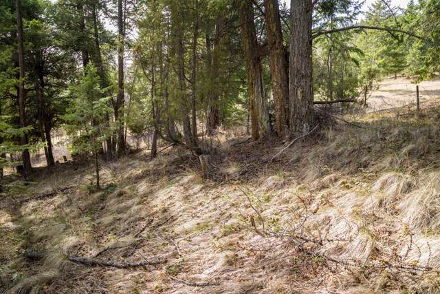 Nhn Us Hwy 93, Rollins, MT 59931 (MLS #22104872) :: Andy O Realty Group