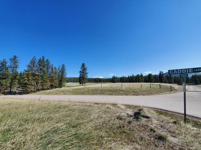 Lot 2 Fairway Court, Plains, MT 59859 (MLS #22104879) :: Andy O Realty Group