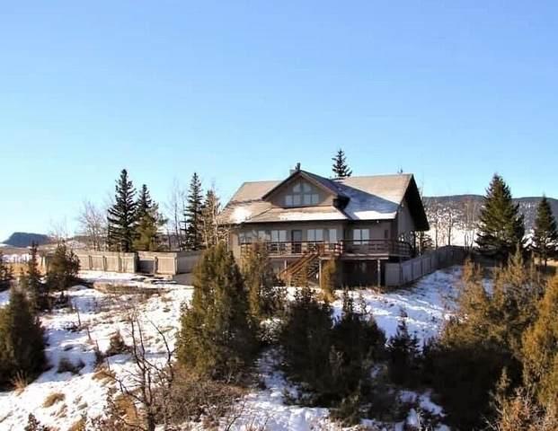 35 Hayfield Loop Trail, Ennis, MT 59729 (MLS #22104943) :: Montana Life Real Estate