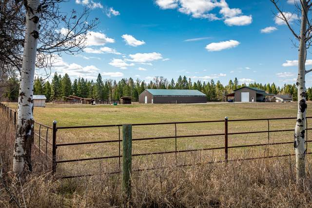 580 Ezy Drive, Kalispell, MT 59901 (MLS #22104997) :: Andy O Realty Group