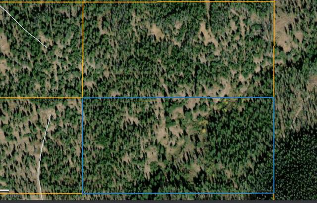 South 2 Ridge Spring Road, Helmville, MT 59843 (MLS #22105036) :: Peak Property Advisors