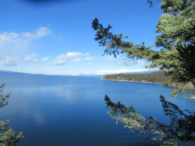 Nhn Osprey Lane, Polson, MT 59860 (MLS #22105330) :: Montana Life Real Estate