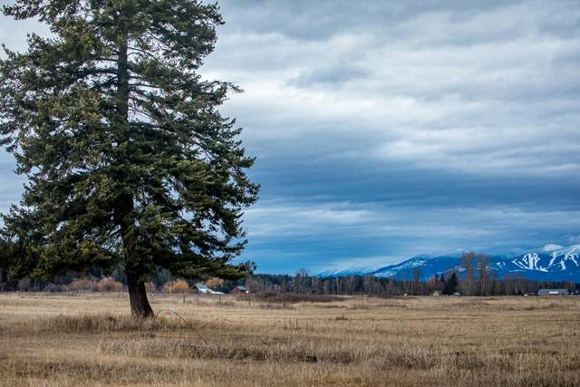 123 Brody Lane, Kalispell, MT 59901 (MLS #22105360) :: Andy O Realty Group