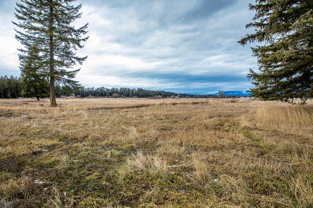 107 Brody Lane, Kalispell, MT 59901 (MLS #22105361) :: Andy O Realty Group