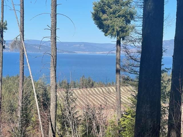 Tbd Bear Hollow, Polson, MT 59860 (MLS #22105394) :: Montana Life Real Estate