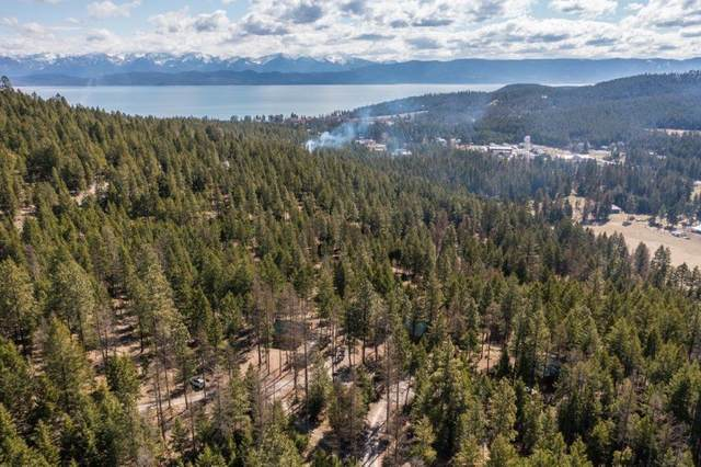 205 Muley Road, Lakeside, MT 59922 (MLS #22105402) :: Montana Life Real Estate