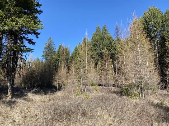 265 Meadow Creek Trail, Fortine, MT 59918 (MLS #22105409) :: Montana Life Real Estate
