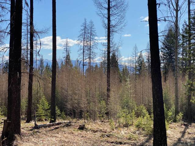 277 Meadow Creek Trail, Fortine, MT 59918 (MLS #22105414) :: Montana Life Real Estate