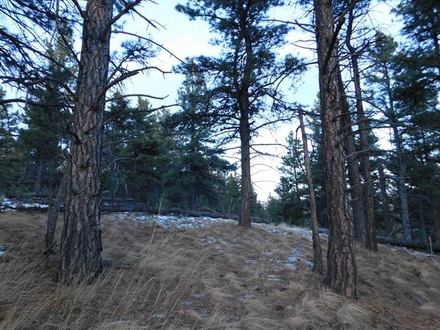 L-73 Lonesome Lane, Cascade, MT 59421 (MLS #22105814) :: Andy O Realty Group