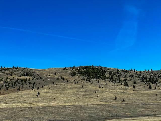 Tbd Wild Horse Meadow, Anaconda, MT 59711 (MLS #22105833) :: Peak Property Advisors