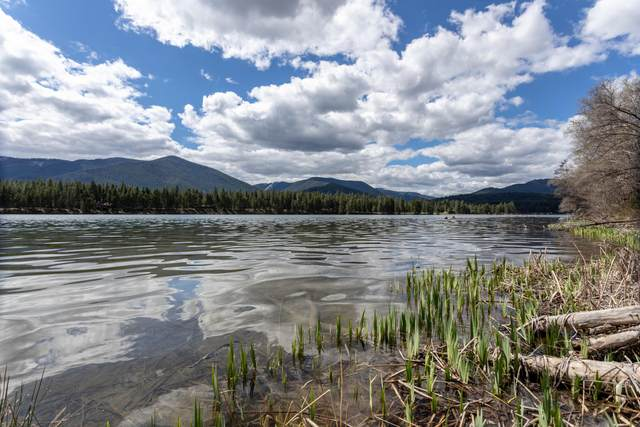Lot 1 Cole Place, Thompson Falls, MT 59873 (MLS #22106074) :: Andy O Realty Group
