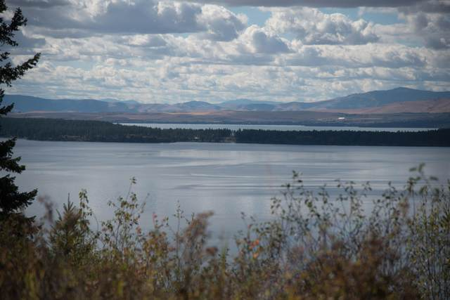 31103 Staghorn Road, Polson, MT 59860 (MLS #22106337) :: Andy O Realty Group