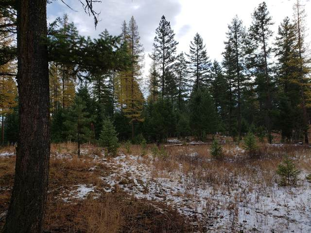 1979 4 Mile Drive, Kalispell, MT 59901 (MLS #22106540) :: Montana Life Real Estate
