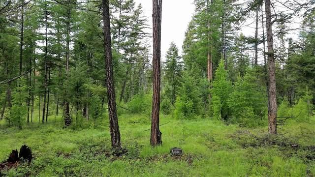 Lot 1a Meadow Springs, Fortine, MT 59918 (MLS #22107253) :: Peak Property Advisors