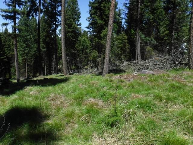 Nhn Bobcat Lane, Seeley Lake, MT 59868 (MLS #22108426) :: Dahlquist Realtors