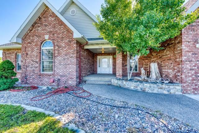 733 Jenne Lane, Florence, MT 59833 (MLS #22108713) :: Peak Property Advisors