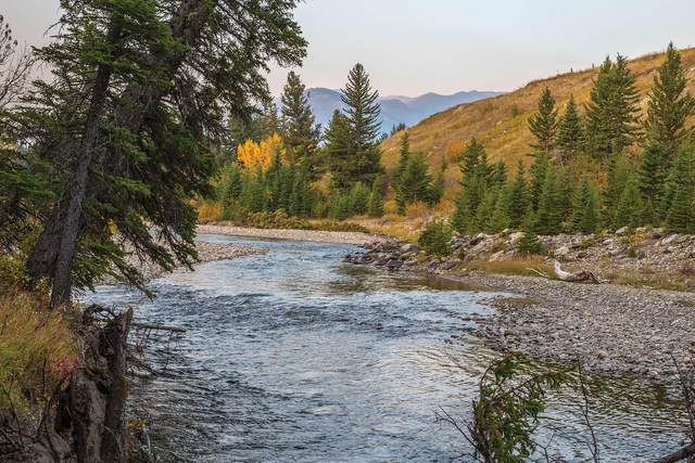Tbd W Boulder Road, McLeod, MT 59052 (MLS #22108797) :: Montana Life Real Estate