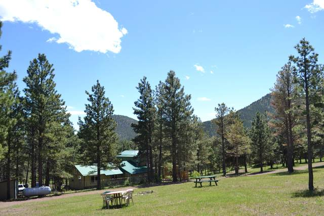3111 Bear Gulch Road, Wolf Creek, MT 59648 (MLS #22108826) :: Andy O Realty Group