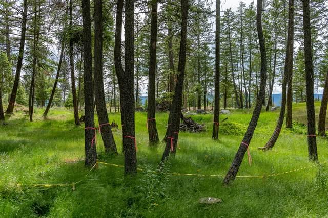 137 Bjork Drive, Bigfork, MT 59911 (MLS #22108852) :: Montana Life Real Estate