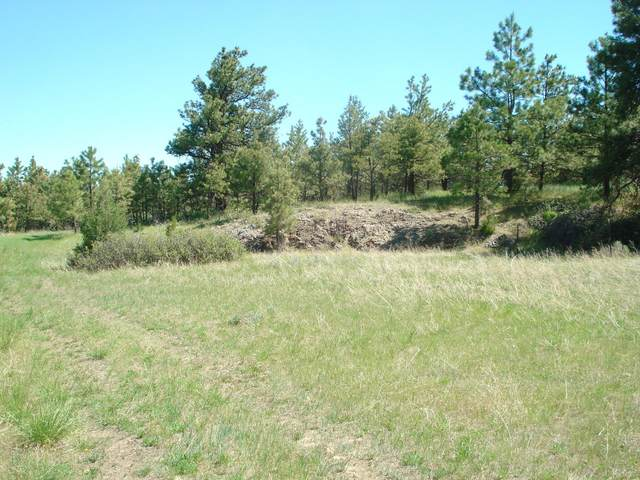 Tbd E Holmes Gulch Road, Montana City, MT 59634 (MLS #22108921) :: Andy O Realty Group