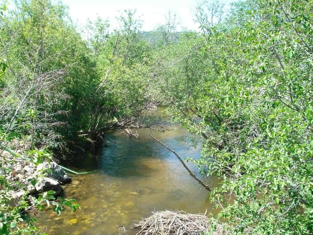 Tract B Mcclellan Creek Road, Montana City, MT 59634 (MLS #22108939) :: Andy O Realty Group