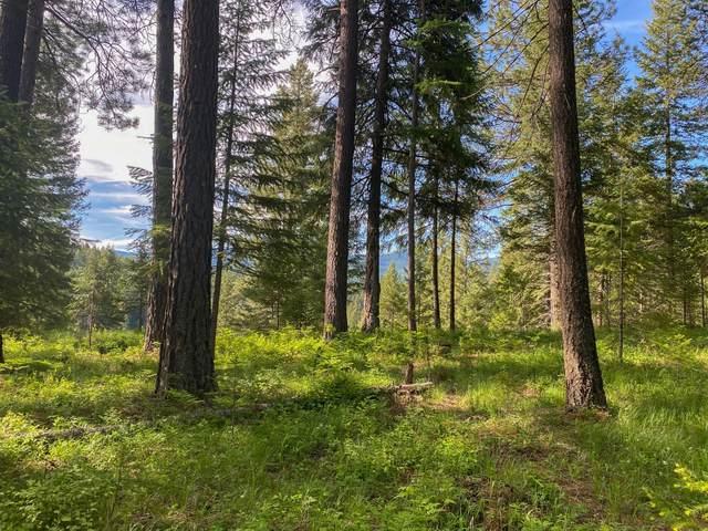 Nhn Trout Creek Road, Trout Creek, MT 59874 (MLS #22109158) :: Peak Property Advisors