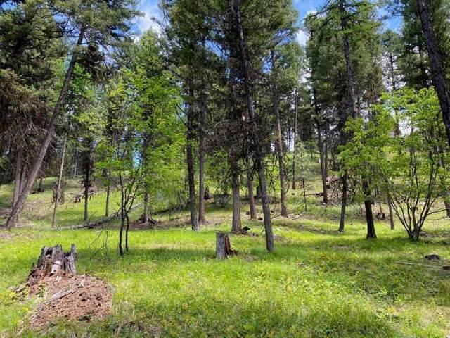 682 Grandview Drive, Seeley Lake, MT 59868 (MLS #22109278) :: Montana Life Real Estate