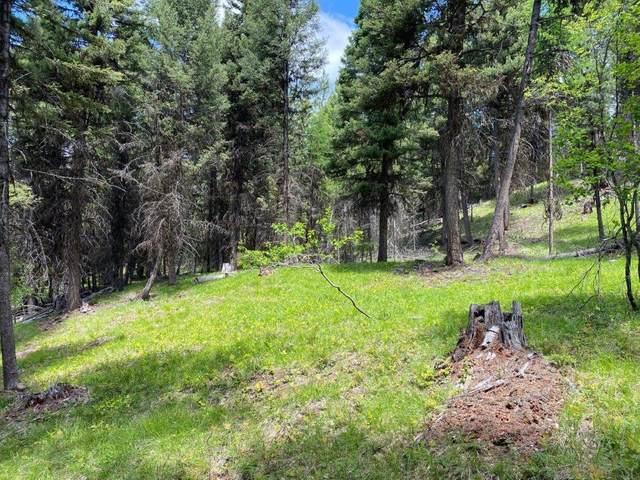 648 Grandview Drive, Seeley Lake, MT 59868 (MLS #22109281) :: Montana Life Real Estate