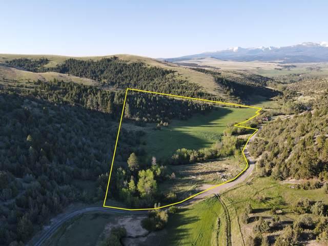 Nhk Carten Creek Road, Gold Creek, MT 59733 (MLS #22109335) :: Peak Property Advisors