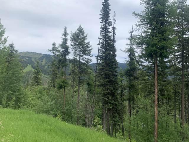 107 Ridge Run Drive, Whitefish, MT 59937 (MLS #22109450) :: Dahlquist Realtors
