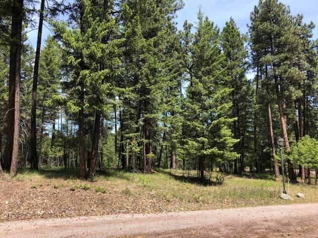 34350 Bobcat Circle, Polson, MT 59860 (MLS #22109540) :: Peak Property Advisors