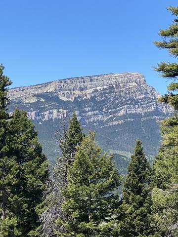 Tbd Falls Creek Road, Augusta, MT 59410 (MLS #22109581) :: Peak Property Advisors