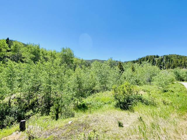 Tbd Holmes Gulch Road, Montana City, MT 59634 (MLS #22109824) :: Andy O Realty Group